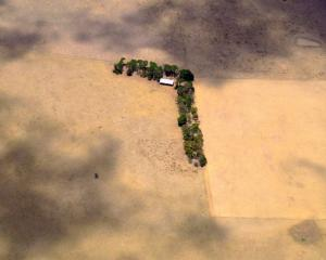 A shed and line of trees can be seen in a paddock on a farm located on the outskirts of Melbourne...