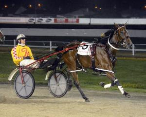 Bonnie Joan and Dexter Dunn race away to a national record win at Forbury Park on Thursday night....