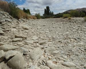 The Cardrona River on the north side of the Ballantyne Rd bridge is not a place to swim at the...