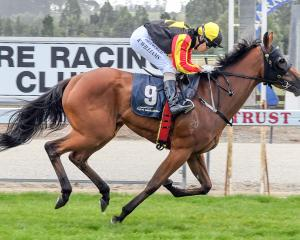 Excelleration and Kylie Williams win the Gore Guineas at Gore on January 20. Photo: Wild Range...
