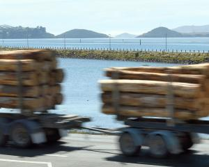 Port Otago says removing all log and container trucks from State Highway 88 to Port Chalmers...