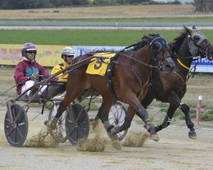Miracle Rising and driver Gavin Smith hunt down the leader, Playboy's Brother and Dexter Dunn, to...
