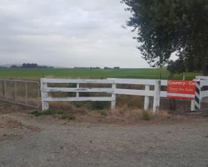 Farm sales are quiet in Southland. The latest REINZ data shows a large number of farms on the...