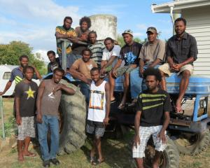 A group of Ettrick-based Vanuatuans are hoping to take two donated British Leyland 270 tractors...