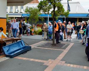 A crowd gathers to watch a performer at last year's South Dunedin Busking Festival. PHOTO: PAUL S...