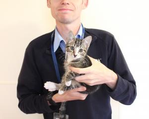 Alex Walker with a kitten from the Otago SPCA. He says drowning kittens, or any animals, causes...
