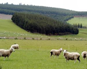 Livestock farmers are being told to look at the emissions trading scheme as an opportunity, not a...
