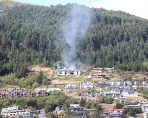 Quickly extinguished: The fire on Queenstown Hill PHOTO: PAUL TAYLOR