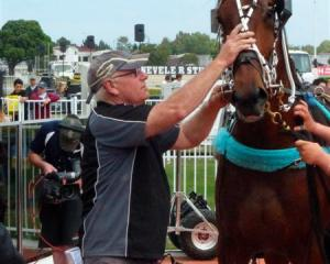 Quick As A Trick's trainer, Bruce Negus, keeps the gelding calm in the winner's circle after his...