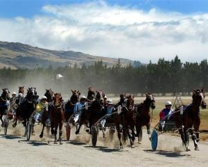 Race one gets under way at the Roxburgh Trotting Club's meeting yesterday. It was won by Red...