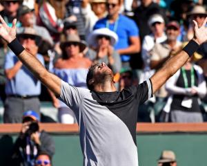 Juan Martin Del Potro celebrates his victory over Roger Federer Photo: Jayne Kamin-Oncea-USA...