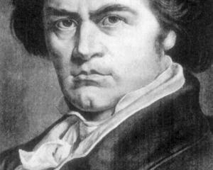Ludwig van Beethoven was considered a rule-breaker. Photo: ODT Files