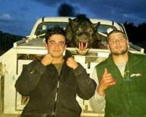 Keen pig hunters Theo and Chad Scrivener have had their pig dogs burned alive by thieves. Photo:...