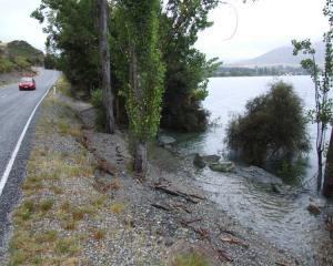 High lake levels at Glendhu Bay, near Wanaka, have already washed out walkways and swamped...