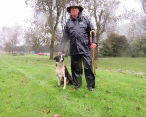 Steve Kerr, of Fairlie, and his dog Mac attended the recent 99th Geraldine Collie Club dog trial...
