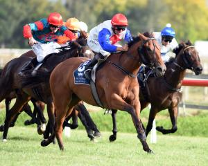 Savvy Coup and Chris Johnson are favourites to win tomorrow's New Zealand Oaks at Trentham after...
