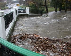 The Oamaru Creek at 11am was close to topping the bridge for SH 1 in Oamaru. Photo by David Bruce