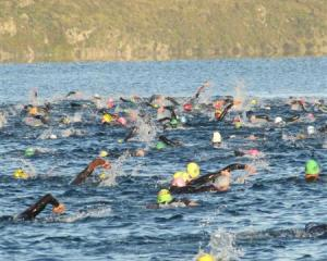 Athletes preparing for Challenge Wanaka swim the course on Lake Wanaka at dawn yesterday,...