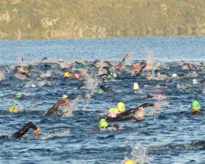 Athletes preparing for Challenge Wanaka swim the course on Lake Wanaka at dawn yesterday,...