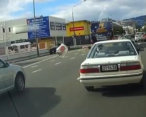 Police continue to track the offenders who were caught on film almost two months ago. PHOTO:...