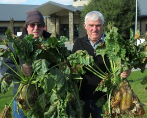 Rabobank Central Otago Winter Feed Competition organisers Barry Murphy (left) and Paul McCarthy,...