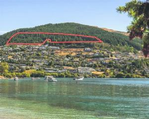 Queenstown Hill land that is being sold by international tender. Photo: Supplied