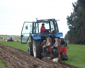 Bob Mehrtens, of Timaru, keeps an eye on his Kvernland plough as he competes in the Farmlands...
