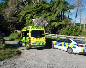 Emergency services have been called to Omanawa Falls. Photo:NZME