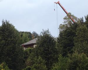 A crane's boom extends above the trees at Closeburn Station, near Queenstown. PHOTOS: DAVID WILLIAMS
