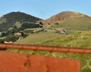The Dunedin City Council is claiming victory as a court ruling saves the shape of Saddle Hill...