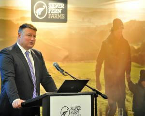 Chairman Rob Hewett addresses the Silver Fern Farms Co-operative  annual meeting in Dunedin...
