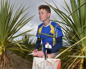Young competitor Brayden Foote maps out his path for the South Island Orienteering Championships....