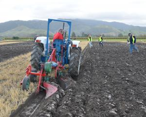 Riversdale woman Tryphena Carter competes in a ploughing match. Photo: Supplied