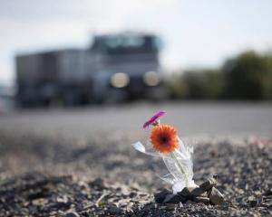 Two flowers form a memorial for the victims of the Kopu bridge fatal crash. Photo: NZ Herald