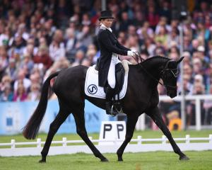 Jonelle Price riding Classic Moet in action during the Dressage test. Photo: Getty Images