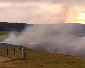 A bush and gorse fire burns in a gully at Kuri Bush. Photo: Janice Lord