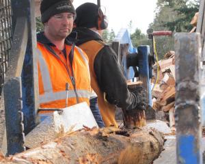Ivan Murdoch and Alex Martin turning wet logs into wet firewood.