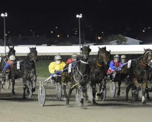 Glenisthebettor (yellow) smiles for the camera before going on to win in a busy finish to race 9...