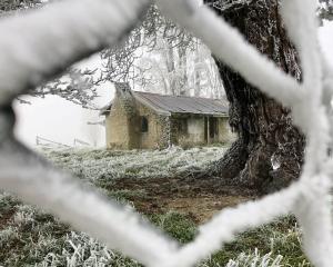 Two teeth-chatteringly lovely frigid winter photographs, taken by Joy Bennett, of Alexandra,...