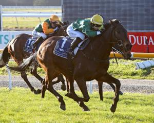 Nashville, pictured winning the Winter Cup with jockey Kate Cowan at Riccarton last year, is...