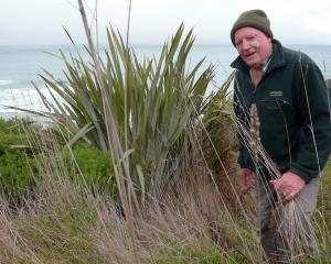 Retired Catlins farmer and Yellow-Eyed Penguin Trust committee member Alan Burgess wants to see...