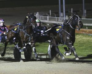 All Nuts N Bolts helps driver Blair Orange set a new New Zealand record for driving wins in...