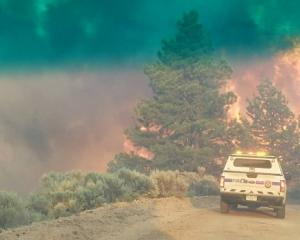 Flames rise from a treeline near an emergency vehicle during efforts to contain the Spring Creek...