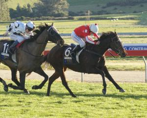Elfee and rider Chris Johnson win the Oamaru Cup from Stoker's Rock and Terry Moseley. Photo:...