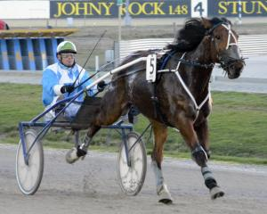Rolleston reinsman Blair Orange notches his 1600th win in the sulky in New Zealand, with the...