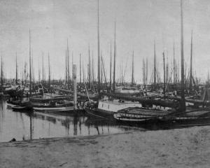This forest of masts is created by some of the 1500 barges in Rotterdam harbour that brought in...