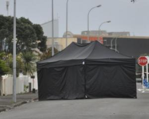 Cyrus Alexis Alupis was found lying on the road with stab wounds in Cowper St in June. Photo:...