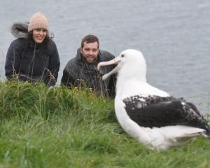 Competition winner Arianna Ponder and her partner Alexander Knight visit the Royal Albatross...