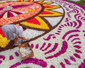 The flower carpet dates back to 1971, when Brussels councillors were impressed by similar...