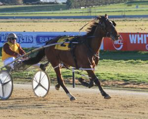 Driver Ricky May  earned the praise of trainer Dean Taylor  in getting Go Davey up to win the...